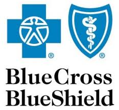 Companies represented by Minnesota Insurance Services_Blue Cross Blue Shield